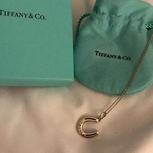Authentic Tiffany's Horseshoe Necklace